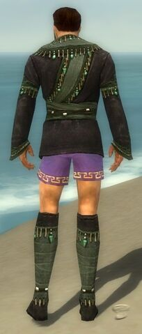 File:Mesmer Elite Luxon Armor M gray chest feet back.jpg