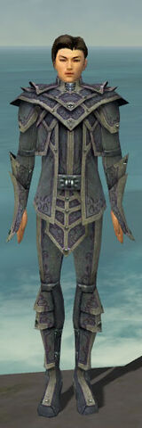 File:Elementalist Krytan Armor M gray front.jpg