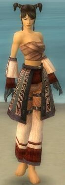 Monk Ancient Armor F gray arms legs front