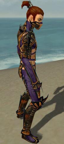 File:Assassin Elite Exotic Armor M dyed side.jpg