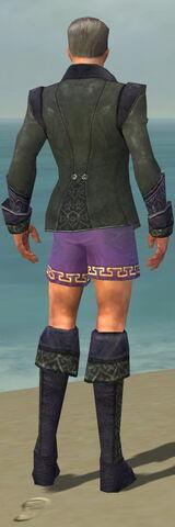 File:Mesmer Elite Elegant Armor M gray chest feet back.jpg