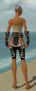 Warrior Ancient Armor F gray arms legs back