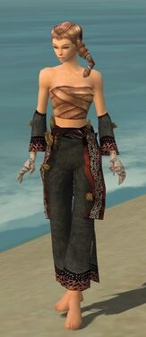 Monk Primeval Armor F gray arms legs front