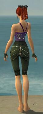 Mesmer Elite Luxon Armor F gray arms legs back