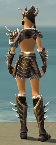 File:Warrior Norn Armor F dyed back.jpg