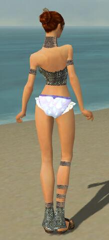 File:Elementalist Istani Armor F gray chest feet back.jpg