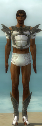 File:Paragon Ancient Armor M gray chest feet front.jpg