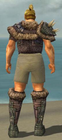 File:Warrior Charr Hide Armor M gray chest feet back.jpg