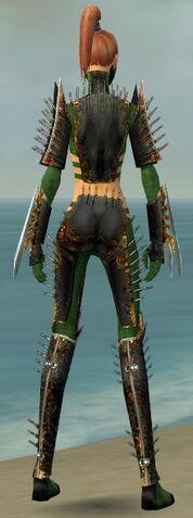 File:Assassin Exotic Armor F dyed back.jpg