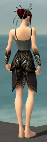 File:Necromancer Istani Armor F gray arms legs back.jpg