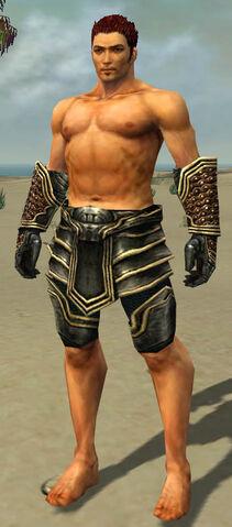 File:Warrior Kurzick Armor M gray arms legs front.jpg