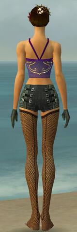 File:Mesmer Kurzick Armor F gray arms legs back.jpg