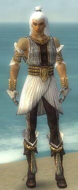 Elementalist Elite Sunspear Armor M dyed front
