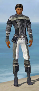 Elementalist Luxon Armor M gray front
