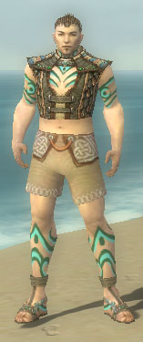 File:Monk Elite Luxon Armor M gray chest feet front.jpg