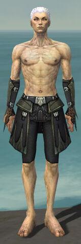 File:Necromancer Cabal Armor M gray arms legs front.jpg