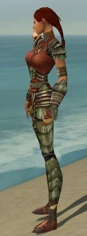 File:Ranger Elite Drakescale Armor F gray side alternate.jpg