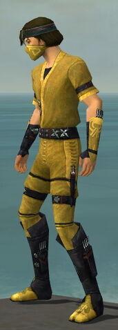 File:Assassin Shing Jea Armor M dyed side.jpg