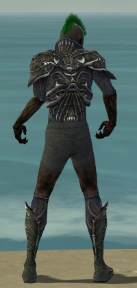 File:Necromancer Elite Necrotic Armor M gray chest feet back.jpg
