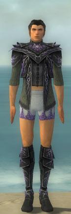 File:Elementalist Elite Stormforged Armor M gray chest feet front.jpg