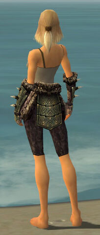 File:Warrior Elite Charr Hide Armor F gray arms legs back.jpg