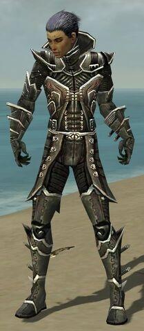 File:Necromancer Elite Kurzick Armor M gray front.jpg