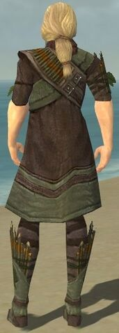 File:Ranger Elite Druid Armor M gray chest feet back.jpg