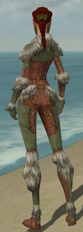File:Ranger Fur-Lined Armor F gray back.jpg
