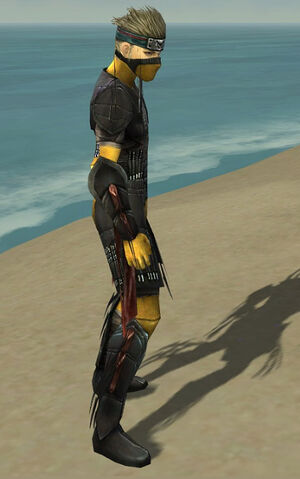 File:Assassin Ancient Armor M dyed side.jpg