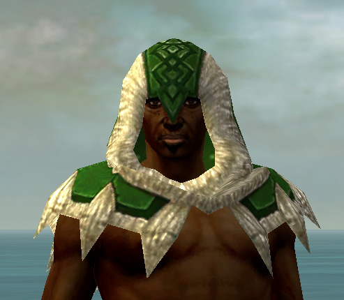 File:Dervish Norn Armor M dyed head front.jpg
