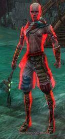 Luxon Army Necromancer