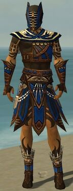 Ritualist Monument Armor M dyed front