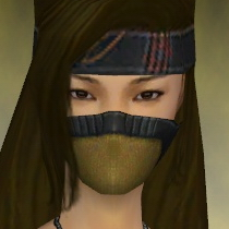 File:Assassin Ancient Armor F dyed head front.jpg