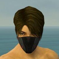 File:Assassin Vabbian Armor M dyed head front.jpg