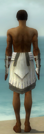 File:Paragon Ancient Armor M gray arms legs back.jpg