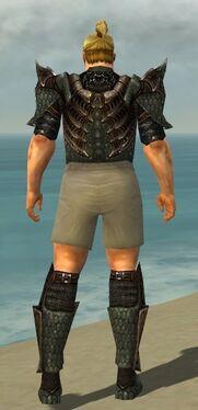 Warrior Elite Dragon Armor M gray chest feet back