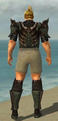 File:Warrior Elite Dragon Armor M gray chest feet back.jpg