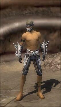 Assassin Asuran Armor M gray arms legs front