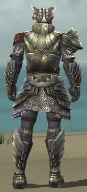 Warrior Templar Armor M gray back