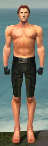 File:Mesmer Sunspear Armor M gray arms legs front.jpg