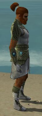 Paragon Monument Armor M gray side