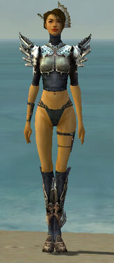 Assassin Asuran Armor F gray chest feet front