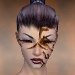 File:Necromancer Norn Armor F dyed head front.jpg