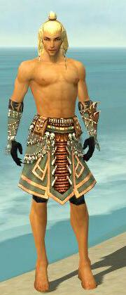 File:Ritualist Elite Imperial Armor M gray arms legs front.jpg