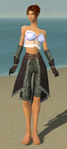 File:Elementalist Ancient Armor F gray arms legs front.jpg