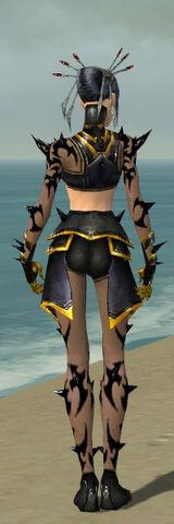 File:Necromancer Obsidian Armor F dyed back.jpg