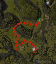 Flyt Stormbeak Map