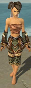 Monk Elite Canthan Armor F gray arms legs front