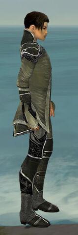 File:Elementalist Shing Jea Armor M gray side.jpg
