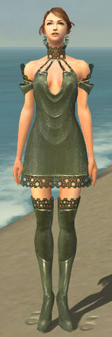 File:Mesmer Enchanter Armor F gray chest feet front.jpg